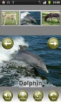 Screenshot of 100 Animal Sounds Quiz