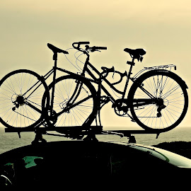 Hauling Bikes by Barbara Brock - Transportation Bicycles ( bicycles, bikes, pacific ocean, bike rack, ocean )