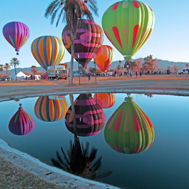 Sunrise Balloon Reflection by Tina Hailey - News & Events Entertainment ( reflections, tina's capture moments, lake havasu az, festival, hot air balloons,  )