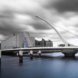 Samuel Becket Bridge by Dan-Cristian Dima - Buildings & Architecture Bridges & Suspended Structures ( harp, ireland, dublin, long exposure, slide, bridge, nikon, moving bridge )