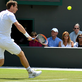 by Jason Chillmaid - Sports & Fitness Tennis