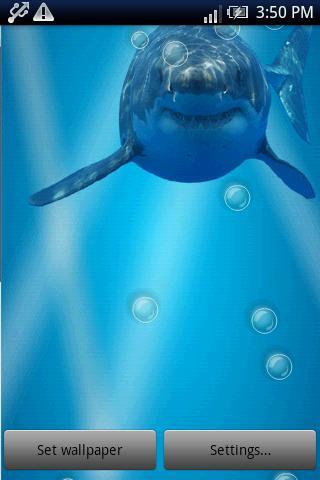 玩娛樂App|飢餓的鯊魚水的反射免費|APP試玩