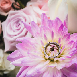Love is pure and as sacred as a wedding ring, it is a Loyalty Over Everything. by Yansen Setiawan - Wedding Details ( ring, wedding ring, wedding, wedding rings, flowers, flower )