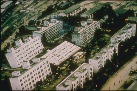 日本公寓楼在1964年的新瀉地震中因为地基不好而发生砂土液化导致大面积倾斜