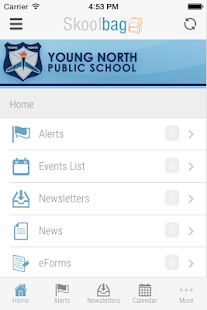 Young North Primary School - screenshot