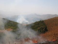 157 hektarlık Munzur 2004