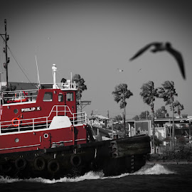 Philip K Tug by Bartz Johnson - Transportation Boats ( shipping, red, vignette, color pop, red pop, tug )