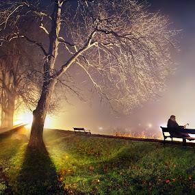 Mystery in the mist by Geir Andersen - City,  Street & Park  City Parks ( geir andersen, atumn, østfold, old town, frost, ostfold, fredrikstad, gamlebyen, fog, moat, selfi, norge, rain )