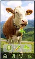 Screenshot of AniWorld free animal kids game