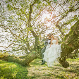 Love In the Wonderland... by Mike Tan - Wedding Bride & Groom ( mike tan, love, pre-wedding, penang, photographer, malaysia )