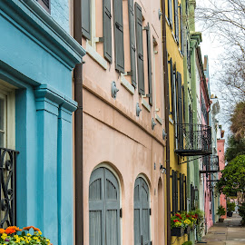 Rainbow Row by Marc Novell - Buildings & Architecture Homes ( charleston, 2014, spring )