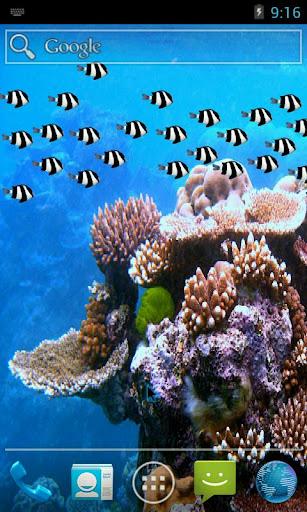 Fish School Wallpaper Free