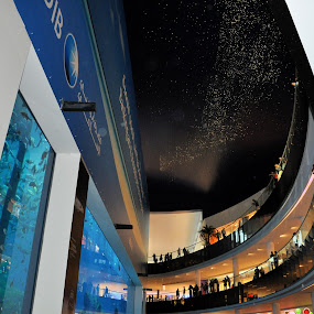 Dubai Mall by Nazir Gohar - Buildings & Architecture Architectural Detail ( dubai mall  dubai   nikond90. photography. photoshop,  )