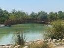 Puente Con Fuente
