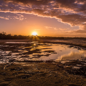 Beach Sunset by Tracy James - Landscapes Sunsets & Sunrises ( clouds, water, sand, sunset, beach, sun, landscape, color, colors, portrait, object, filter forge,  )