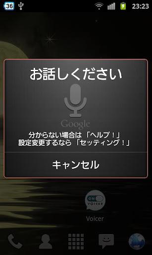 Voicer