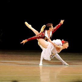 Pas de Deux by João Ascenso - People Musicians & Entertainers ( marinsky theater, ballet,  )