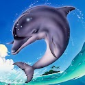 Dolphin Theme icon