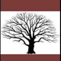 Contact Phone Tree icon