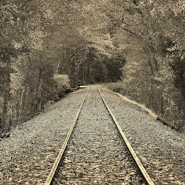 by Jeff London - Transportation Railway Tracks