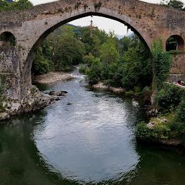 Cangas de Onis by Liliana Cordi - Buildings & Architecture Bridges & Suspended Structures ( agua, plantas, piedras )