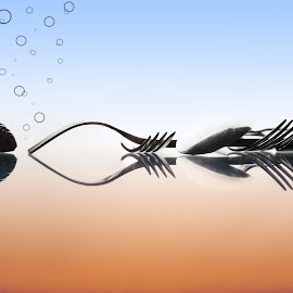 family by Dimitris Stenidis - Novices Only Objects & Still Life ( studio, macro, reflection, forks, ds photography, fish, bubles, white )