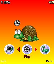 Virtual Turtle