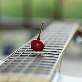 I saw this little red fruit in front the workshop. I've no idea what it is called but I picked it up and brought to my room. Put it on my guitar, grabbed the camera and shot it. :D by Ag Van - Novices Only Objects & Still Life