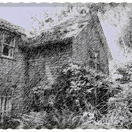 Vashon Island House by Dan Dusek - Digital Art Places ( sketch, black and white, pencil drawing, house, abandoned,  )