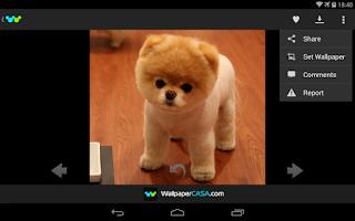 Screenshot of Animal Pix HD
