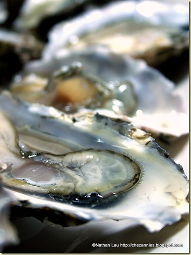 fresh oysters from Hog Island Oysters