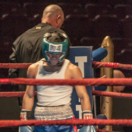 Golden gloves  by Robert Elisondo - Sports & Fitness Boxing