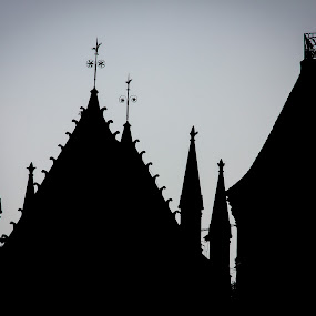 Church by Subodh Kesarkar - Black & White Buildings & Architecture ( church, black and white )