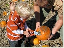 pumpkin 002