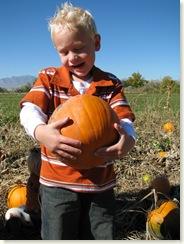 pumpkin 021