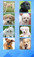 Screenshot of Dogs Puzzle