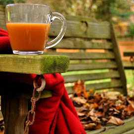 Cider in the Fall by Emily Johnson - Food & Drink Alcohol & Drinks ( blanket, cozy, fall, coffee, apple cider, leaves, nikon,  )