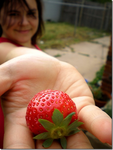 FirstStrawberry