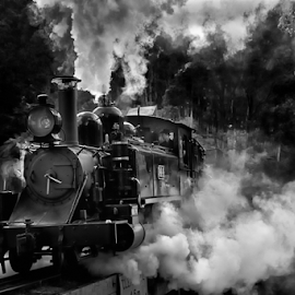 by Susan Block - Transportation Trains