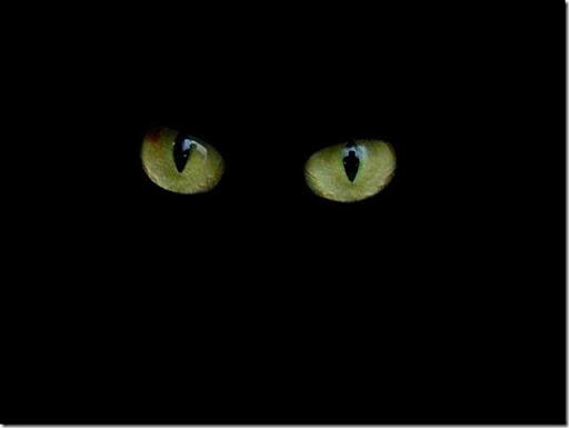 olhos_no_escuro