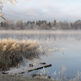 Frosty morning with the lake by Carina Carlin - Landscapes Waterscapes ( småland, winter, frost, lake, morning )