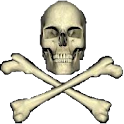 PirateLiveWallpaper icon