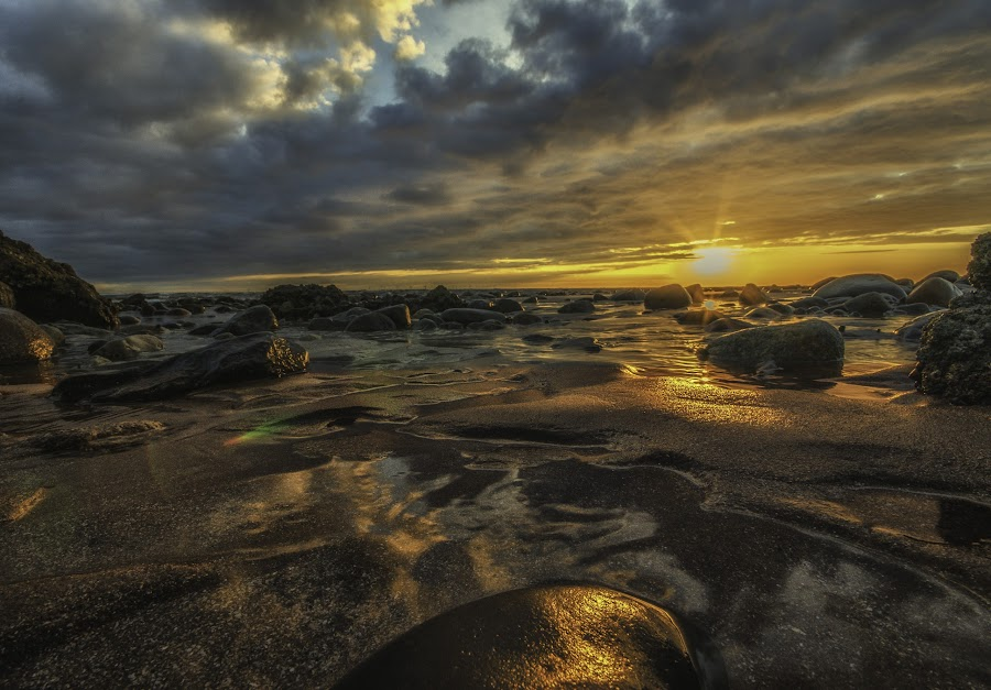 Low down by Graham Kidd - Landscapes Sunsets & Sunrises ( clouds, sand, sunset, rocks, golden, sun,  )