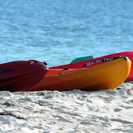 Malibu Two by Jody Frankel - Transportation Other ( ocean, beach, surf, bahamas, canoes )