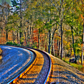 Audobon Acres Train Tracks by Jermaine Pollard - Landscapes Travel ( chattanooga, tn, outdoors, fall, edit, tennessee, train, audobon, acres )