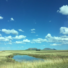 by Jessica  Potgieter  - Landscapes Prairies, Meadows & Fields