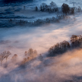 Trees around the mist at the sunrise by Pietro Ebner - Landscapes Cloud Formations