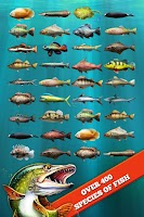 Screenshot of Let's Fish: Sport Fishing