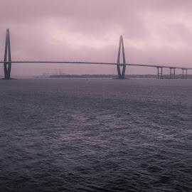 Savannah Bridge by Jim King - Buildings & Architecture Bridges & Suspended Structures ( savanah, waterscape, bridge )