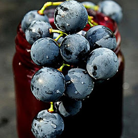Perfectly sweet black grapes by Alka Smile - Food & Drink Fruits & Vegetables
